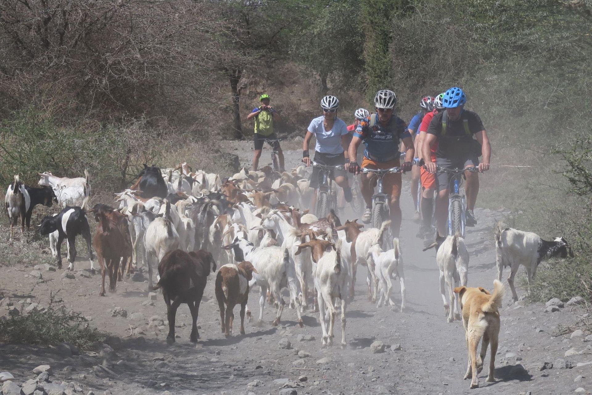 bike-tour-maasai-village
