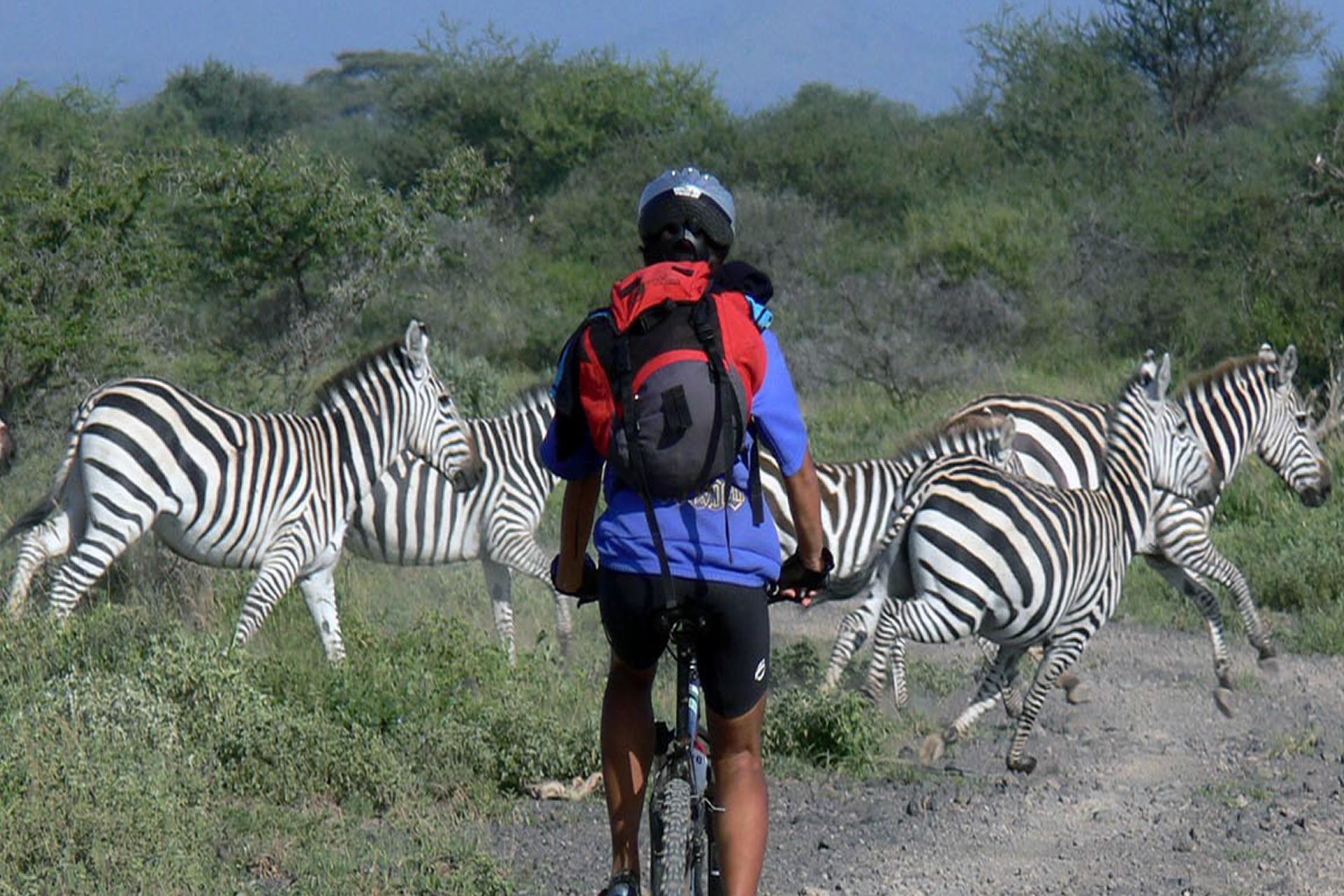 Kilimanjaro Bike Safari
