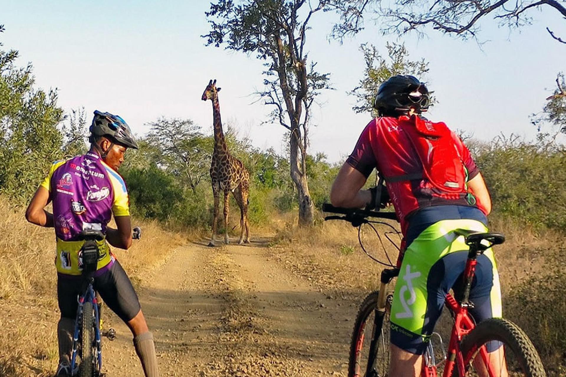 Kili-Bike-Park-Safari-3
