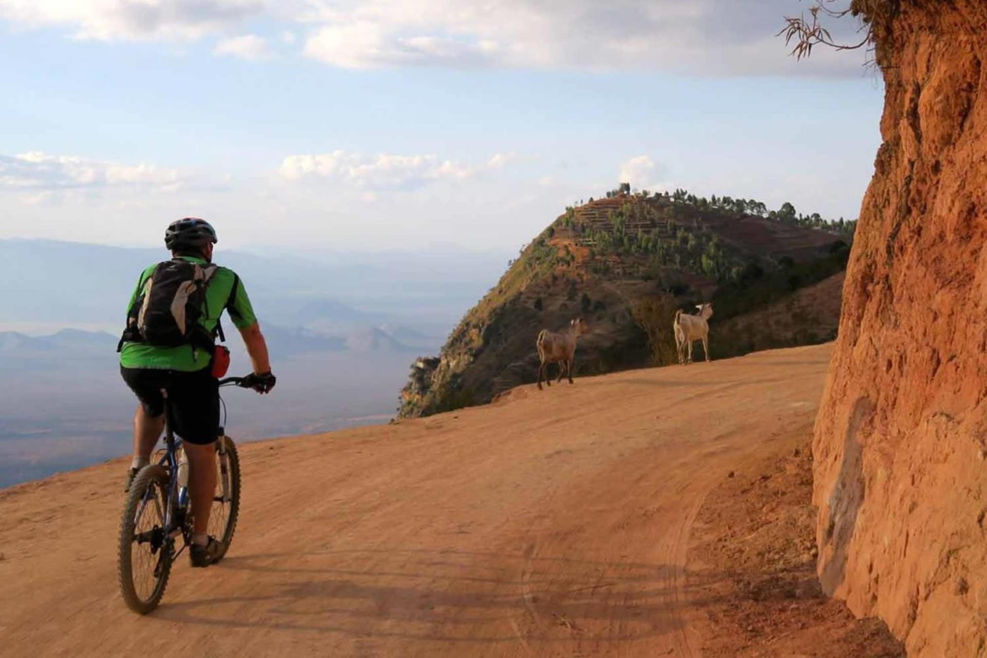 cycle-to-pangani-1630x860